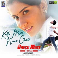 Movie songs of Kallu Moosi Ninnu Choosi | Check Mate