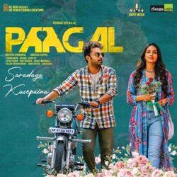 Movie songs of Saradaga Kasepaina Song from Paagal